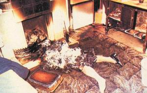 Combustiones espontaneas, el fuego de la muerte Combustion3