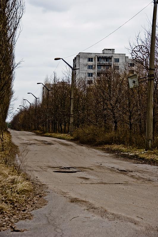 desolacion