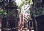 rep_siem_reap_ta_prohm_1_s