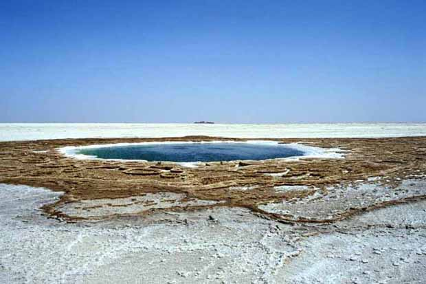 spring_in_salt_plain