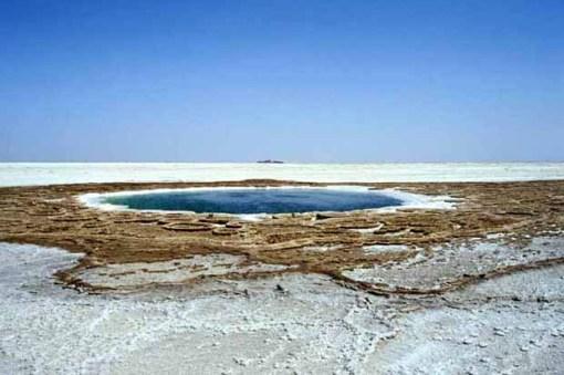 spring_in_salt_plain