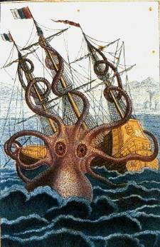 El Kraken. Todo sobre los calamares gigantes.