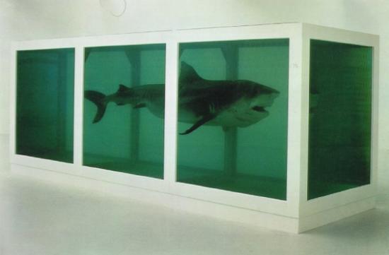 damien_hirst-shark-1