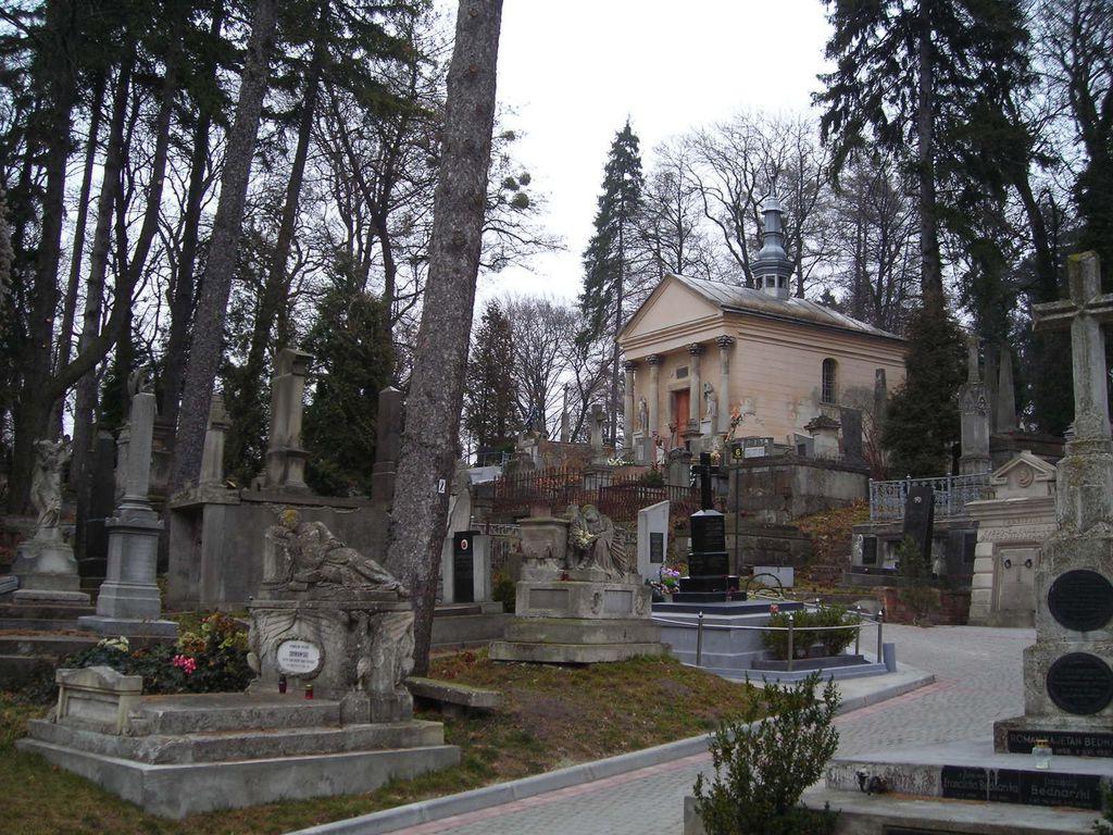 el-cementerio-de-lychakivskiy-cd06503cca_1o
