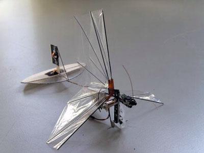 delfly-micro-robot