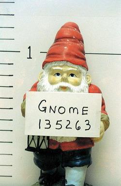 gnomo3