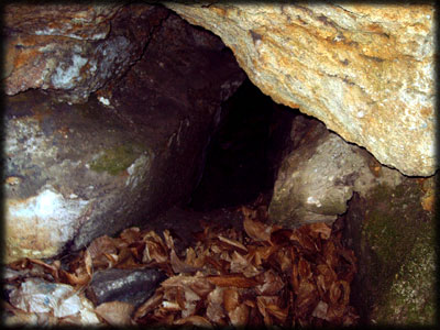 grotto-cave