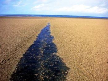 mar Piedras