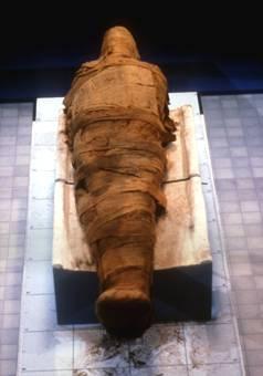 La maldición de la princesa Amon-Ra. 20080417171428-momia