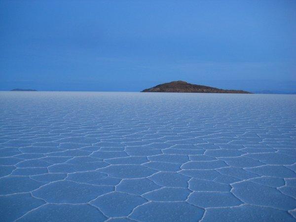 Isla-del-Pescado-Salar-de-Uyuni-Bolivia-