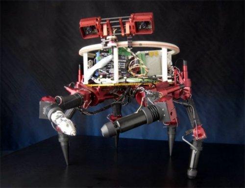 robot_lemur