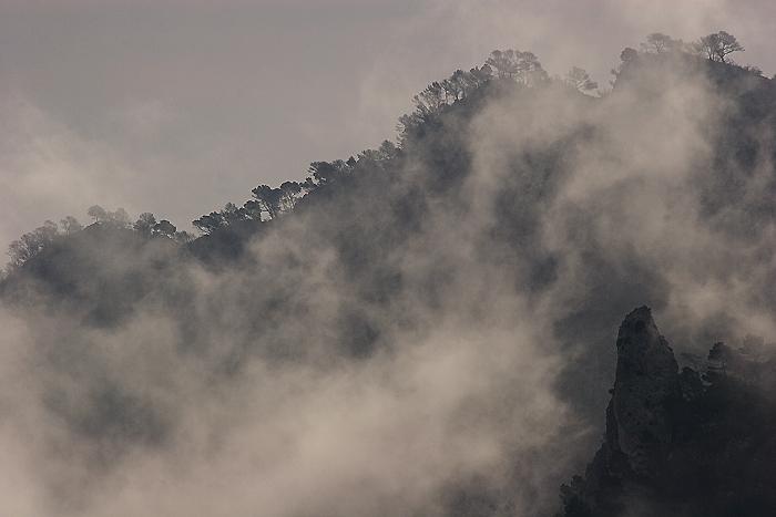Los fuegos de Laroya Fuegos_laroya