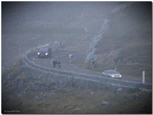 carreteras mortales