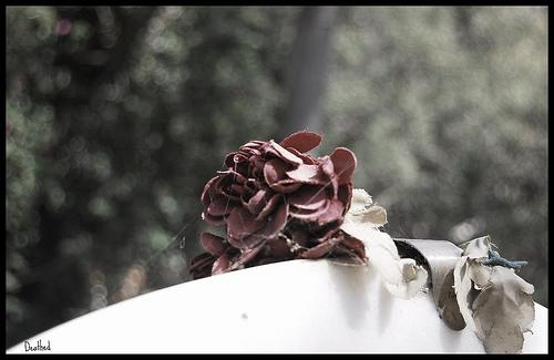 cementerio_fantasmas
