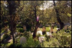 cementerios_con_leyenda