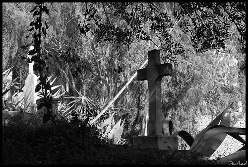 english_cemetery_malaga