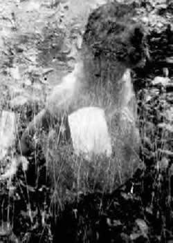 Las 100 Mejores fotos de FANTASMAS DE LA HISTORIA Segunda Partida Fantasma3