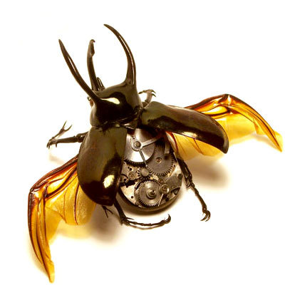 insecto_robot
