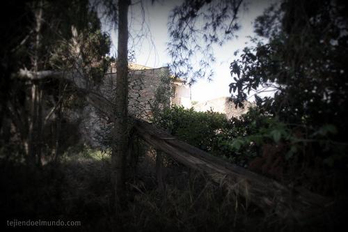 jardin_abandonado