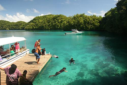 El Lago de las Medusas. Palau Jellyfish_lake