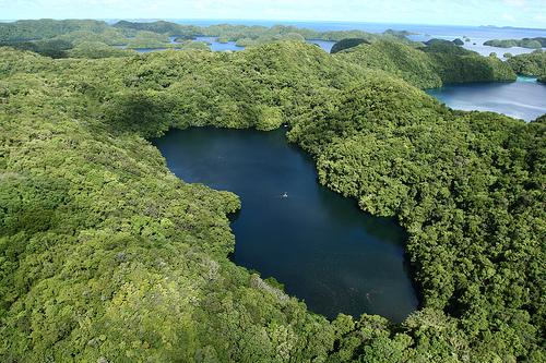 El Lago de las Medusas. Palau Lago_de_las_medusas2