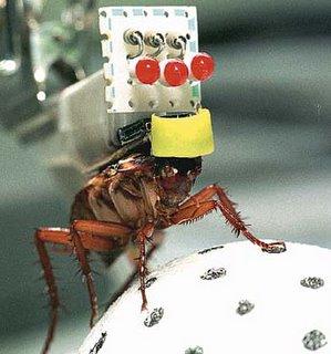 robot-disfrasado-de-cucaracha