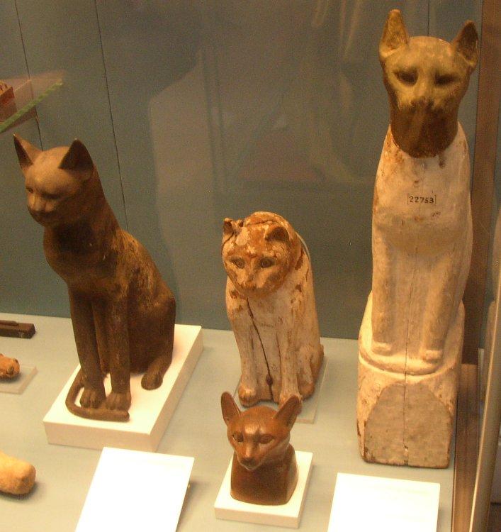 cat_mummies2_british_museum