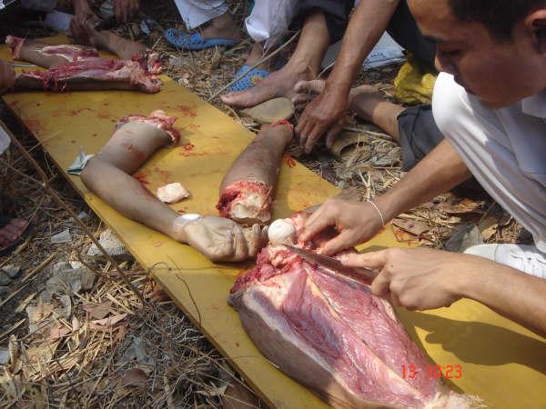 clase_anatomia_tailandia007