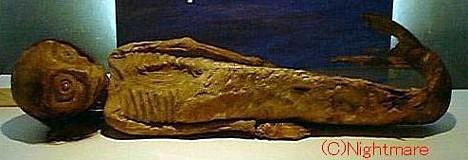 momias