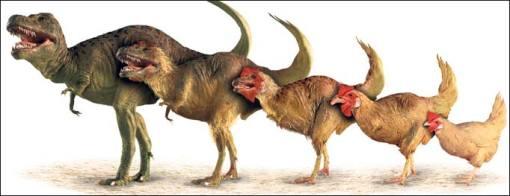 en ellos caracteristicas de dinosaurios desaparecidos hace millones de