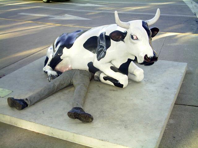vaca_asesina
