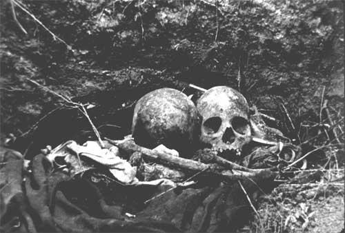 04---skulls_lowres