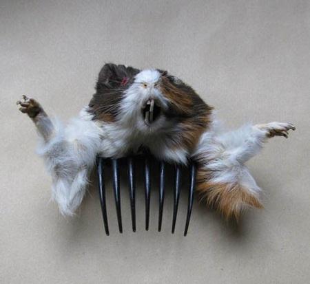 Animales disecados como complementos de moda