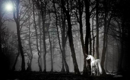 Los Unicornios. Unicornios