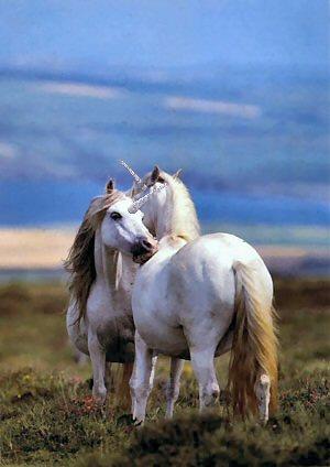 Seres fabulosos. El unicornio.