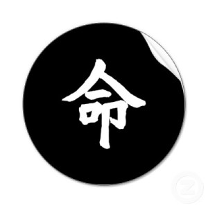 almas gemelas - Almas Gemelas... Relaciones Multidimensionales... - Página 2 Black_kanji_destiny_sticker-p217035454839503051qjcl_400