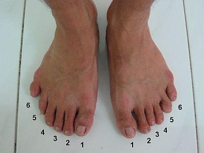 dedos de los pies europeo