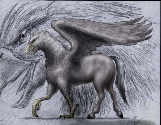 Criaturas Legendarias Grifos E Hipogrifos El Pensante