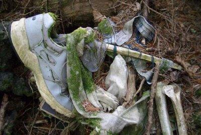 El bosque de Aokigahara, la meca de los suicidas en Japón.[ADVERTENCIA, imagenes fuertes, abstenerse personas sensibles] Aokigahara-471