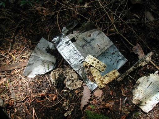 El bosque de Aokigahara, la meca de los suicidas en Japón.[ADVERTENCIA, imagenes fuertes, abstenerse personas sensibles] Bosque-suicida5