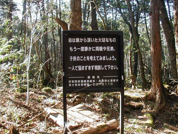 Resultado de imagen de bosque Aokigahara