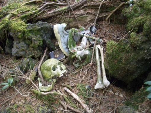 El bosque de Aokigahara, la meca de los suicidas en Japón.[ADVERTENCIA, imagenes fuertes, abstenerse personas sensibles] Bosque_suicidios_japon