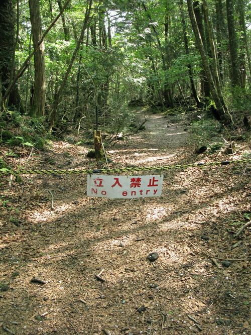 El bosque de Aokigahara Jyukai