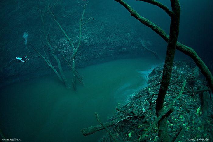 Ríos subacuaticos, los siniestros paisajes de los cenotes mexicanos