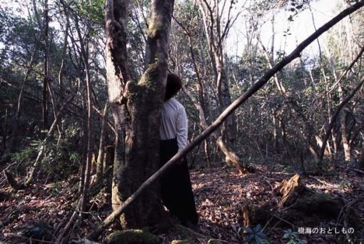 El bosque de Aokigahara, la meca de los suicidas en Japón.[ADVERTENCIA, imagenes fuertes, abstenerse personas sensibles] Suicidios_japon