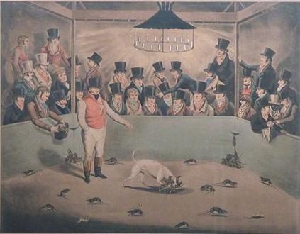 Juegos, juguetes y entretenimientos victorianos (para niños y adultos) Bull_terrier