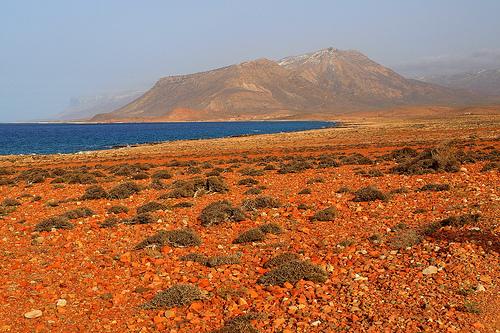 Un recorrido por nuestro planeta: asombrosas imagenes. - Página 2 Socotra_island_yemen