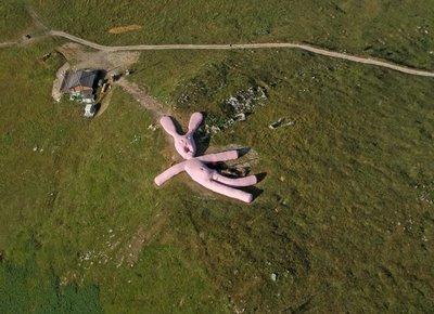El conejo rosa gigante que cayó del cielo.