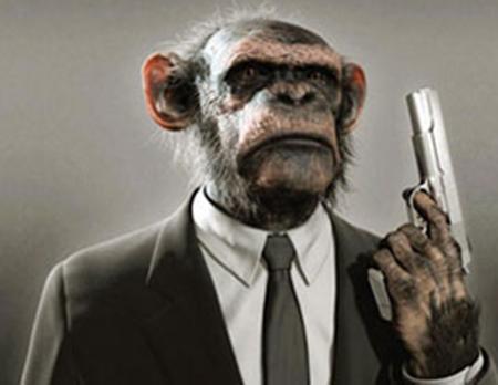 Los chimpancés pandilleros