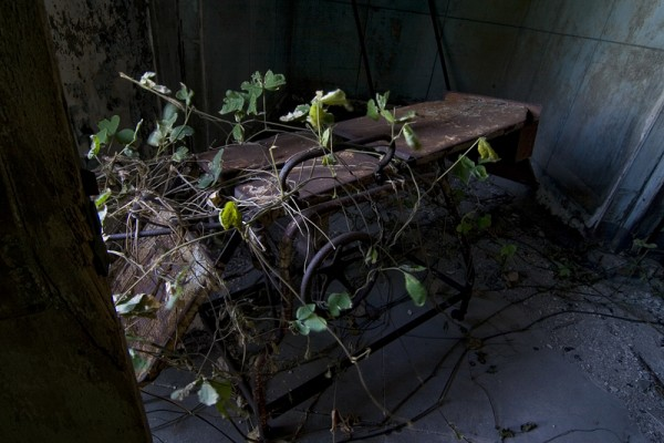 Abandonos. El complejo hospitalario de North Brother island. (Riverside Hospital)
